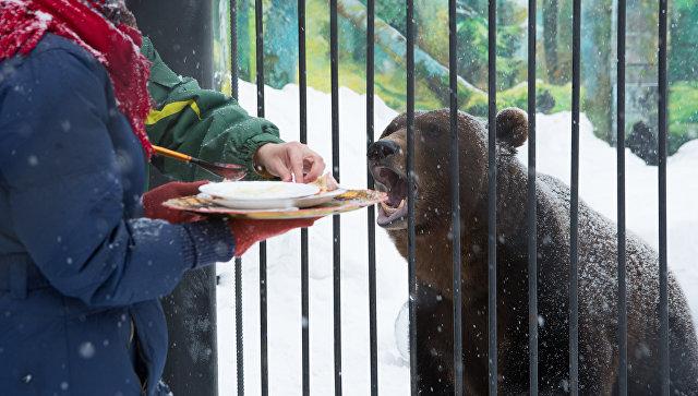 Животных внижегородском зоопарке «Лимпопо» накормили блинами вчесть Масленицы
