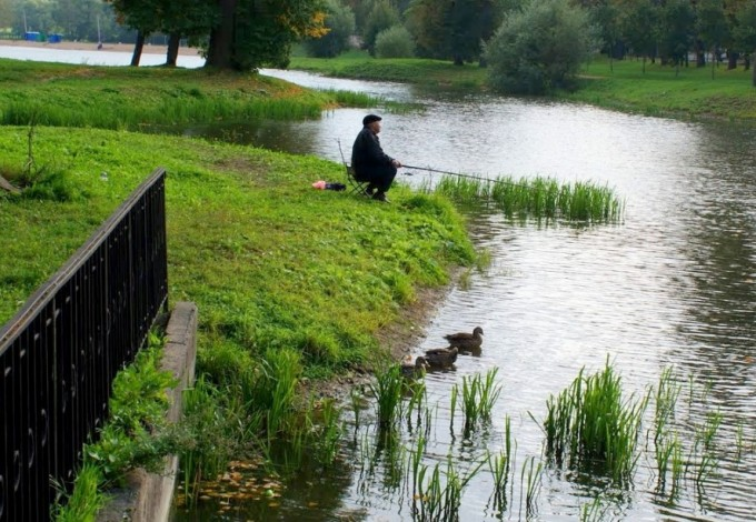 большой пруд в пушкине рыбалка