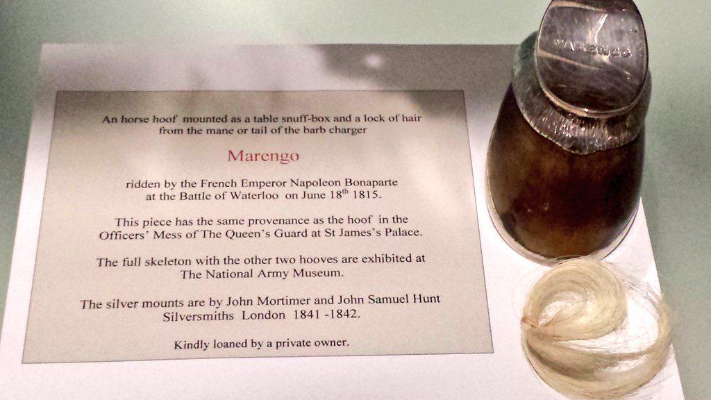 202 года спустя найдена табакерка изкопыта коня Наполеона— В Великобритании сенсация