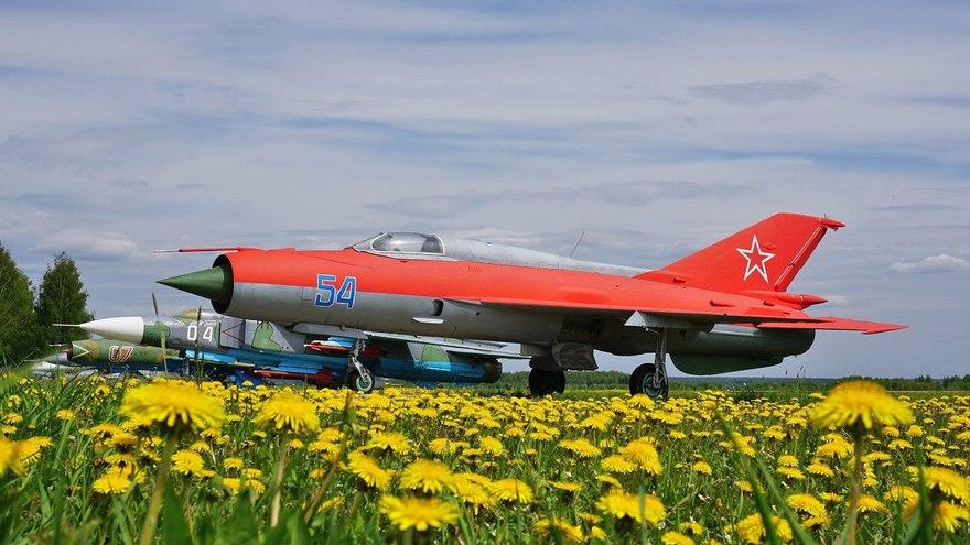 ВПушкине вавиашоу приняли участие 30 самолетов ивертолетов